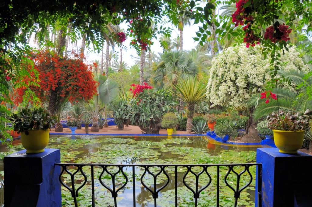 jardin majorelle jardines yves saint laurent madmenmag marrakech