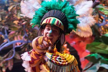 carnavales visioon direct
