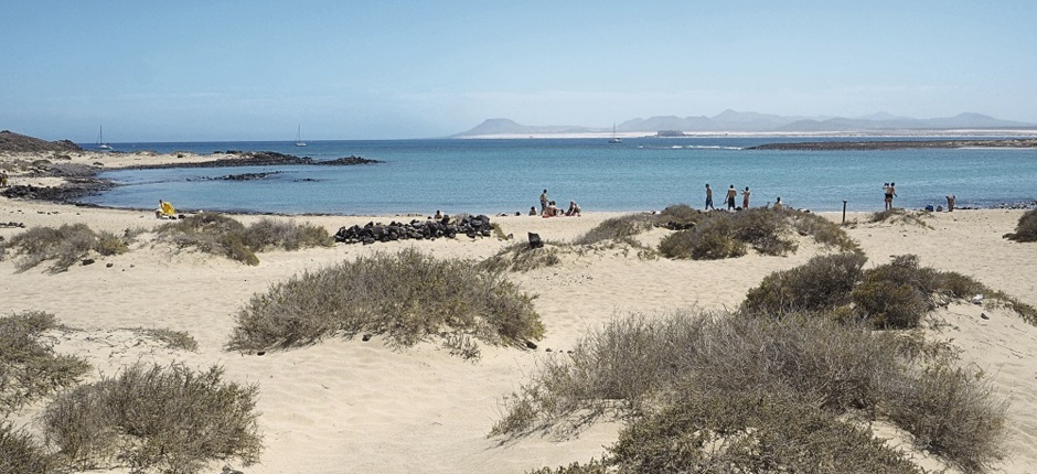 playa de la concha isla de lobos