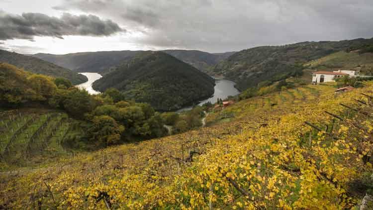 rutas en tren por galicia vistas