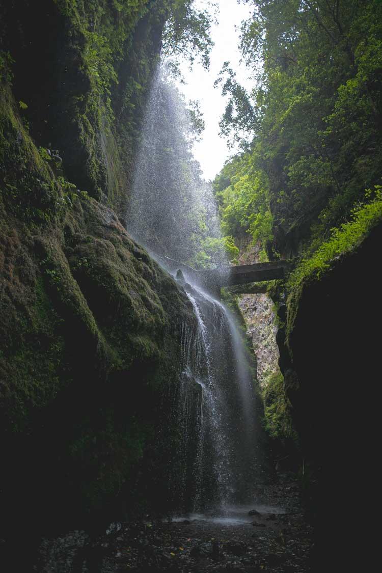 cascada-de-agua-en-un-bosque-tropical