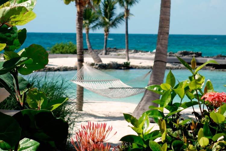 hamaca en isla tropical