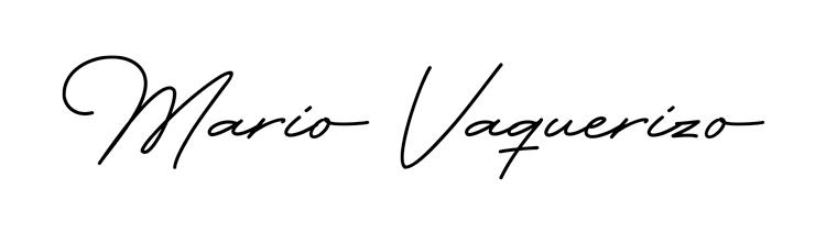 mario-vaquerizo-firma